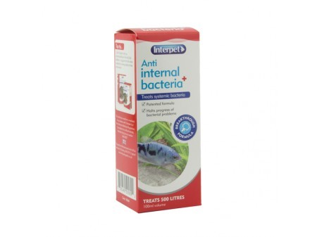 Interpet Internal bacterial Treatment